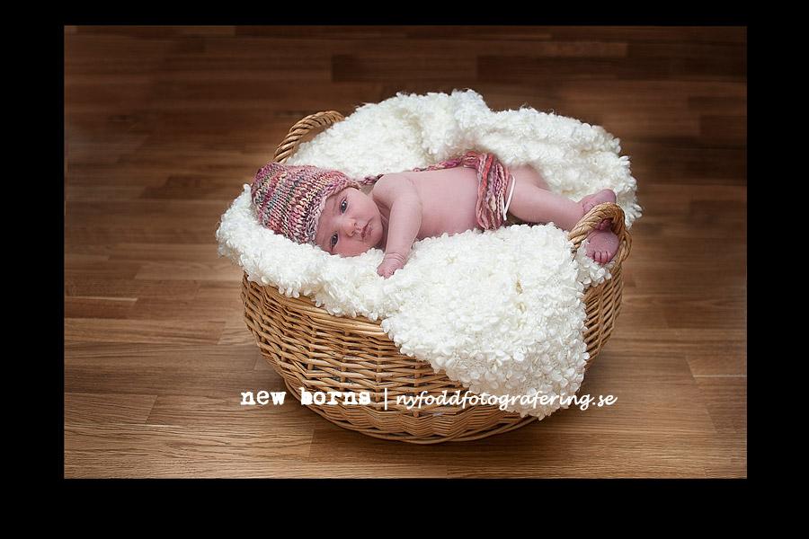 bilder på nyfödda nyfödda bebisar nyfödda bebisar – Nyföddfotografering bilder på nyfödda